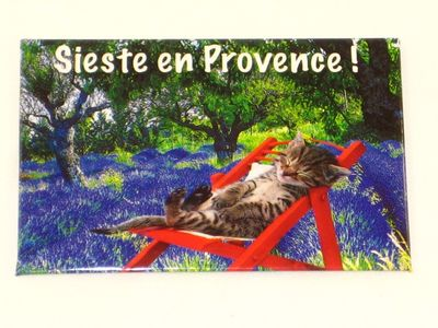 Magnet Photo Provence Chat Dans Son Hamac